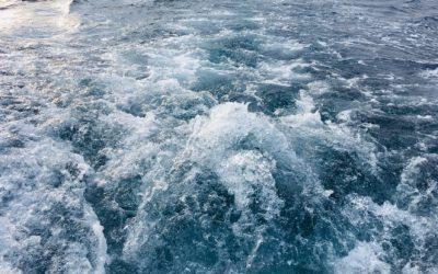 Ob svetovnem dnevu voda
